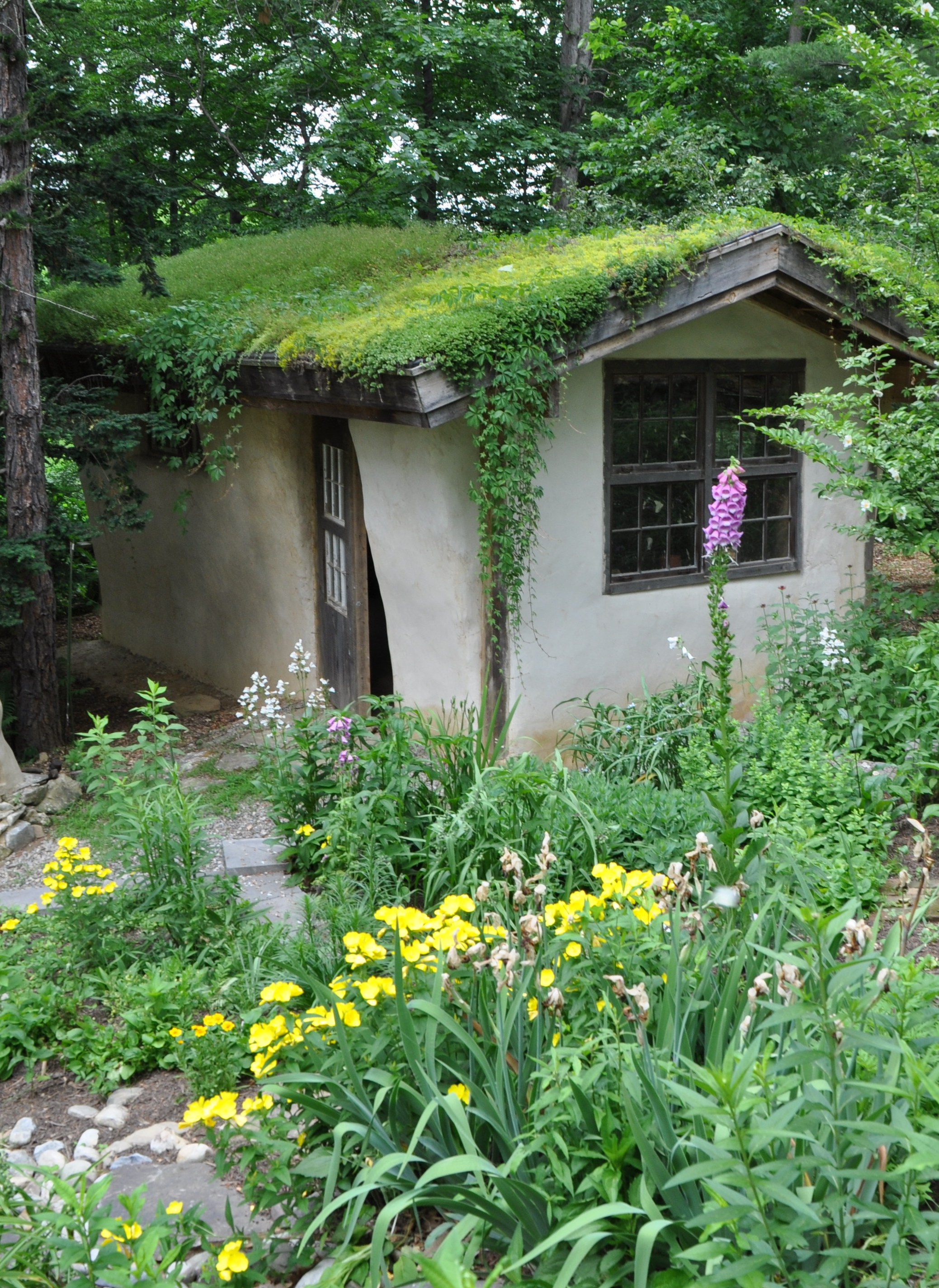 Living Roof Workshop Info